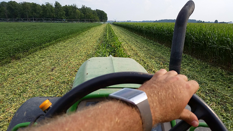 Knowledge Base Wearable Computer Application In Agriculture