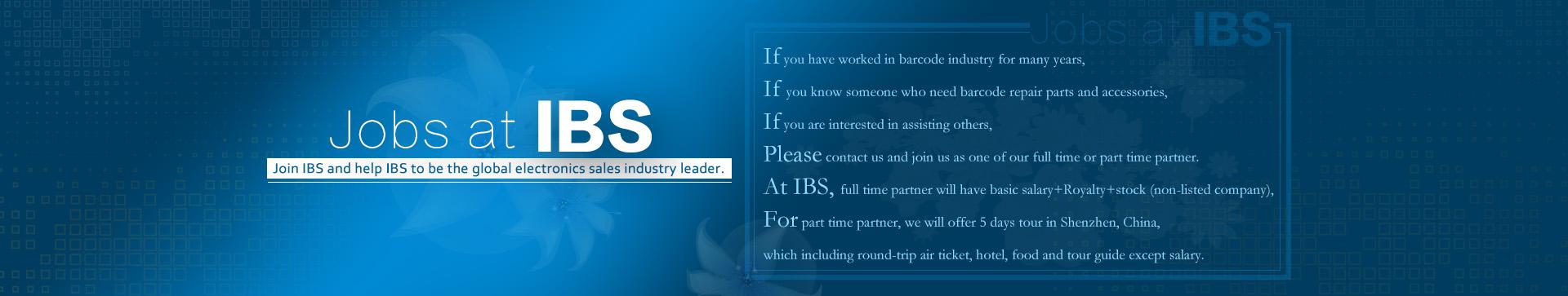 Job at IBS
